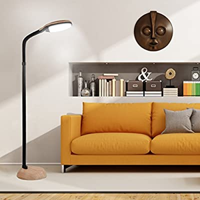 Elecwish LED Adjustable Floor Lamp light Flexible Full Spectrum Natural Bright White 6000K 12W 900lms Dimming Modern Portable Reading Non-Flicker