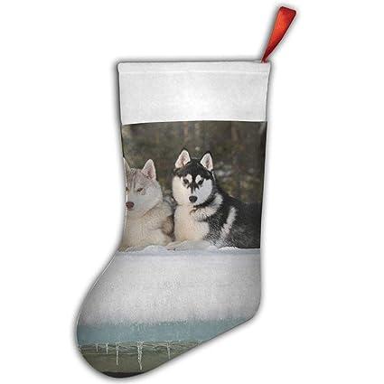 Amazon Com Vicrunning Sled Dog Siberian Husky Alaskan Malamute