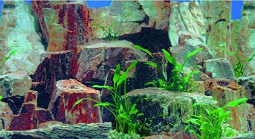Aquarium Rückwand Bilder Zum Ausdrucken: Aquarium terrarium