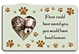 Best Picture Frames With Heart Shaped - Pet Memorial Picture Frame - If Love Could Review