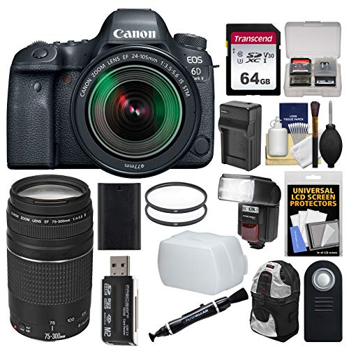 Canon EOS 6D Mark II Wi-Fi Digital SLR Camera & EF 24-105mm is STM + 75-300mm III Lens + 64GB Card + Backpack + Flash + Battery/Charger + Filters Kit
