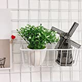 ZONYEO Mesh Wire Hook Basket, Multifunction Metal Wall Grid Panel Accessories Mounted for Organizer Balcony Plant Holder Storage White Coated