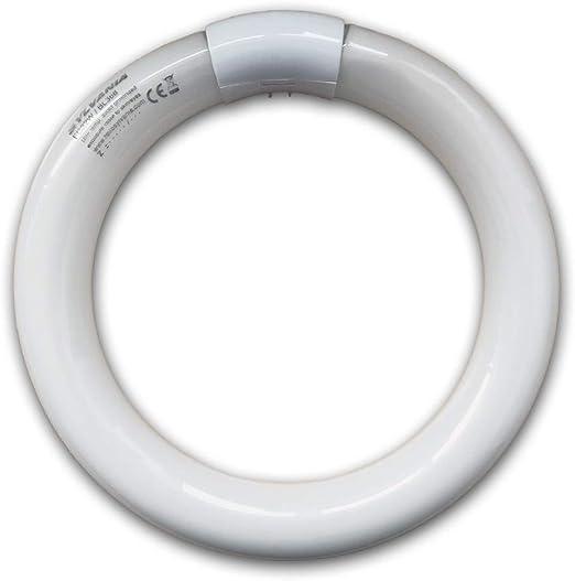 Lampadina Ricambio per Zanzariera Elettrica Neon 32W//BL350 Circolare MO-EL 368-G