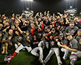 The Boston Red Sox 2018 World Series Champions On The Field Team Photo 8x10 Photo Picture