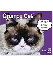 2022 Grumpy Cat Year-In-A-Box Calendar (LMB24700)