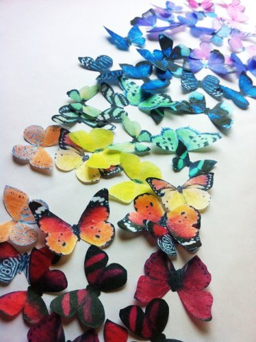 Edible Butterflies © - Small Assorted Raibow Collection Set of 50- Cake and Cupcake Toppers, Decoration