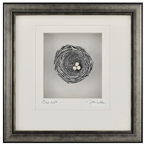 Cynthia Webb Designs Our Nest Pewter Wall Art, Antique Silver Wood Frame (San Decor Diego Garden)