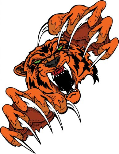 """6"""" wide Angry Tiger with Giant Claws. Printed vinyl decal sticker for any smooth surface such as windows bumpers laptops or any smooth surface."""