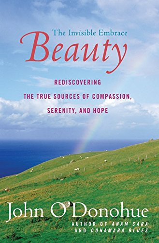 Download Beauty: The Invisible Embrace pdf epub