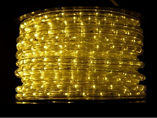 Wide Loyal Led Rope Light
