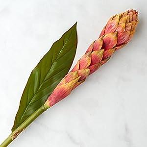 Factory Direct Craft Tall Artificial Bromeliad Flower Stem | 2 Pieces 57