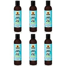 Tropic Isle Living Jamaican Black Castor Oil Shampoo 8 oz (Pack or 6)