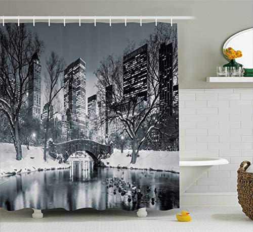 Ambesonne Landscape Shower Curtain by, Cityscape New York City in Winter Central Park Snowy Buildings Photo Art, Fabric Bathroom Decor Set with Hooks, 70 Inches, Grey and Dimgrey (Nyc Building Shower Curtain)