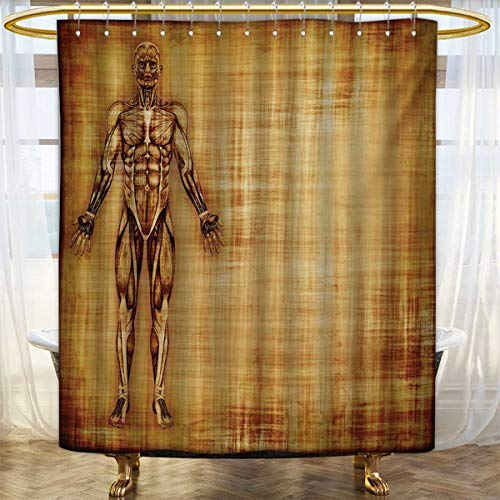 Lacencn Human AnatomyShower Curtains With Shower HooksGrunge Old Parchment Effect Skeleton Muscles