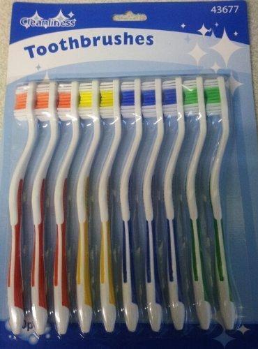 Zizzi 10 Pack Toothbrushes UKASNHKTN7431