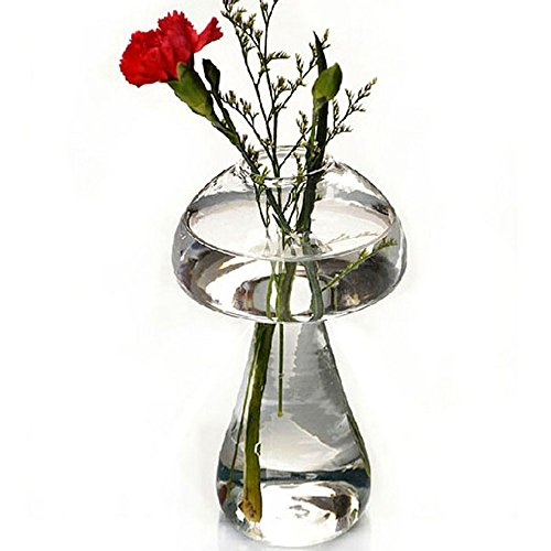 Pursuestar Glass Mushroom Shaped Plant Flower Vase Water Hydroponic Container Desk Bonsai Home Office Wedding Decoration Girl Gift