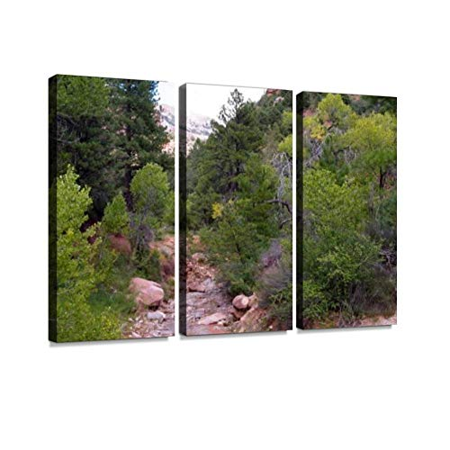 Taylor Creek Trail, Kolub Canyons, Zion National Park, Utah, USA Print On Canvas Wall Artwork Modern Photography Home Decor Unique Pattern Stretched and Framed 3 Piece ()