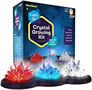 Crystal Growing Kit for Kids + LIGHT-UP Stand - Science Experiments for Kids - Crystal Science Kits - Craft St