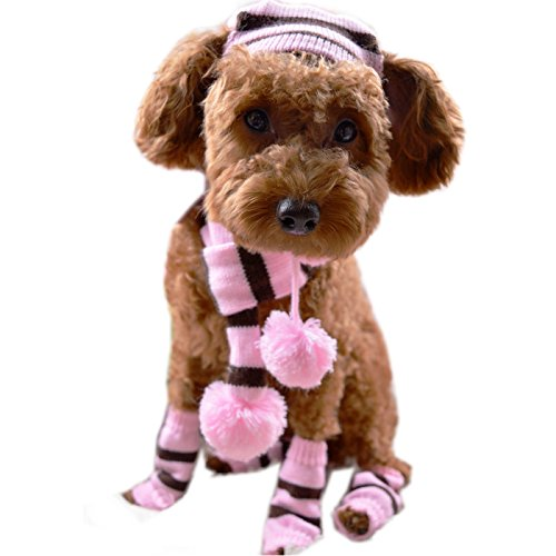Alfie Pet by Petoga Couture - Jerry Winter Scarf, Hat and Leg Warmers Set for Dogs and Cats - Pattern: Pink, Size: Medium Dog Hat Set