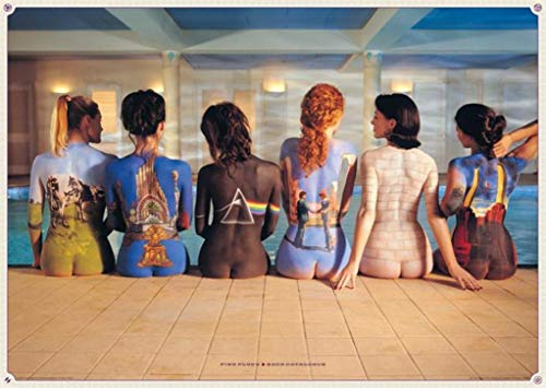 (61 x 91.5cm Pink Floyd Back Catalogue Maxi Poster)