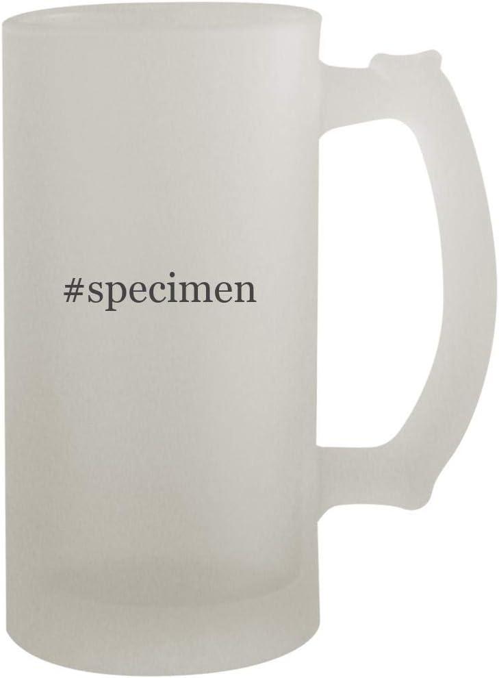 #specimen - 16oz Frosted Beer Mug Stein, Frosted