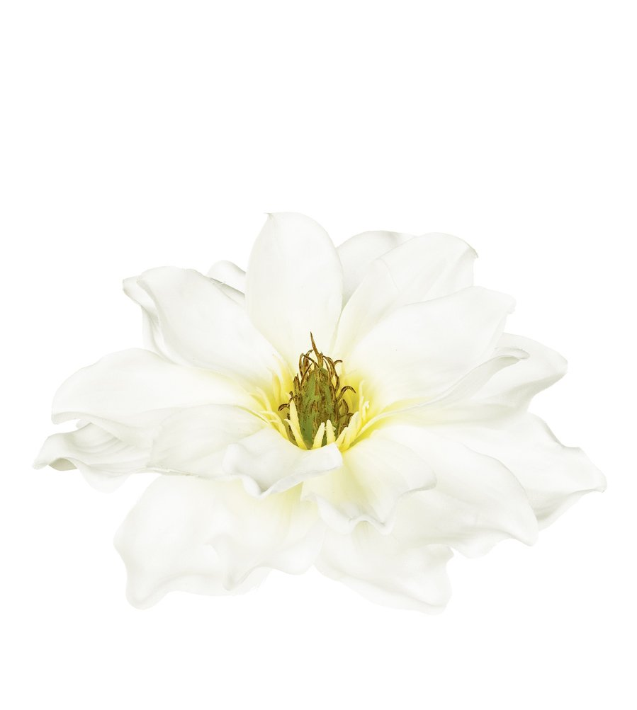 (Magnolia) - Sullivans Artificial Floating Flower (Magnolia) B07DHWYW7F マグノリア
