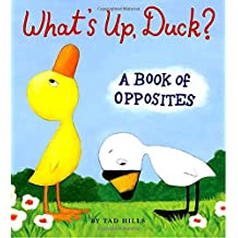 What's Up, Duck?: A Book of Opposites