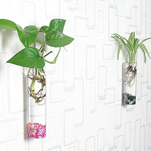 Siyaglass Pack of 2 Crystal Glass Wall Hanging Flower Vase Planter Terrarium Container Flower Pot Cylinder ()