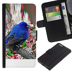 KingStore / Leather Etui en cuir / Apple Iphone 6 PLUS 5.5 / Robin Pájaro azul de la primavera flor de manzano