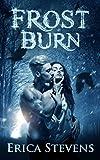Free eBook - Frost Burn