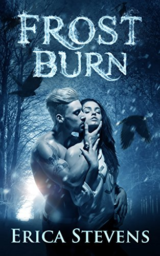 Frost Burn (The Fire and Ice Series, Book 1) by [Stevens, Erica]