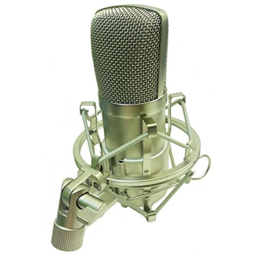 Alctron MC001 Studio Condenser Microphone with Large 32mm Gold Sputtered Diaphragm and Shock Mount
