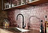 Moen 3942SRS Deck Mounted Kitchen Soap Dispenser