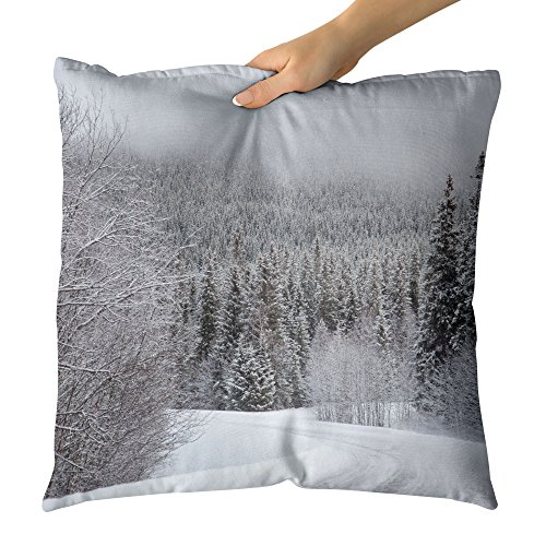 Curve Hood Decorative (Westlake Art Tree Snow - Decorative Throw Pillow Cushion - Picture Photography Artwork Home Decor Living Room - 26x26 Inch)