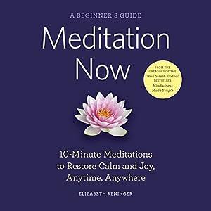 Meditation Now: A Beginner's Guide Audiobook