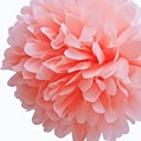 Paper Pom Poms For Birthday Party Wedding Annual Home Decoration Peach 15cm