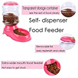 Jutao Pet Feeder and Waterer, Automatic Self- dispenser Food Feeder Gravity Drinking Fountains 1 Gallon/2.2lbs/3.5L for Dog and Cat (Feeder)