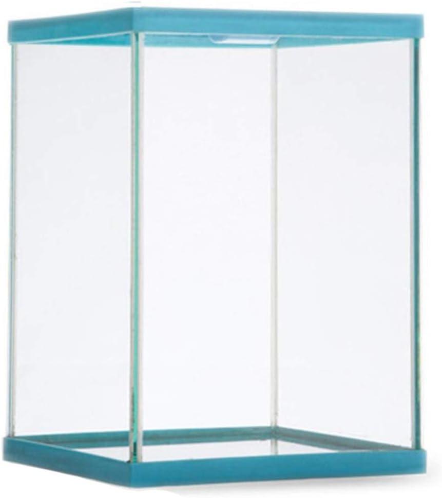 Reptil Terrario de Vidrio Caja de alimentación Transparente Estuche de Escalada de Insectos Azul L: Amazon.es: Jardín