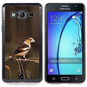 /Skull Market/ - Brown Branch Berries Yellow Spring For Samsung Galaxy On5 SM-G550FY G550 - Mano cubierta de la caja pintada de encargo de lujo -
