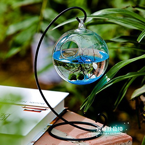 "NewDreamWorld Table Aquarium Kit - 2 x 10 mm Aquatic Living Moss Balls Small Stones of Glass Black Fan Coral Branch in a 3.5"" Hanging Orb Terrarium with Bent Metal Stand"