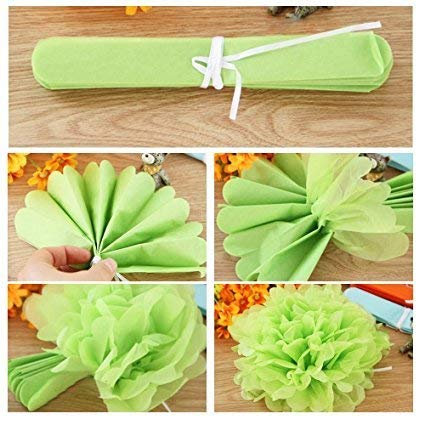 10 14 Inch Paper Pom Poms-Perfect for Wedding Decor Wedding Party and Outdoor Decoration Birthday Celebration Tissue Paper Flowers-20 pcs of 8
