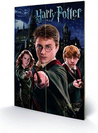 Harry Potter 1art1 Harry Ron Hermione Cuadro De Madera (60 x ...