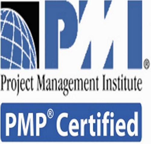 Amazon.com : PMP (Project Management Professional) Online ...