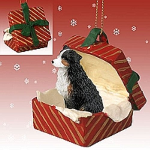 Conversation Concepts Australian Shepherd Tricolor w/Docked Tail Gift Box Red Ornament (Box Gift Red Shepherd)