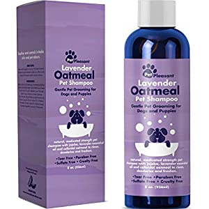 Colloidal Oatmeal Dog Shampoo with Pure Lavender Essential Oils - No Tear Shampoo for Dry Itchy Skin Relief - Pet Odor Eliminator - Grooming Shampoo 109