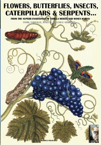 Flowers, Butterflies, Insects, Caterpillars & Serpents...: From Sybilla Merian & Moses Hariss XVII-XVIII Centuries Engravings