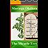 Bible Miracle Tree: healing with Moringa