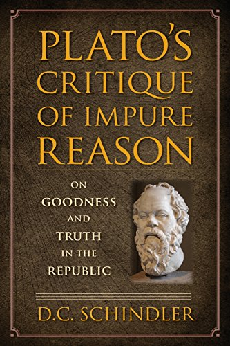 Plato critique of democracy essay