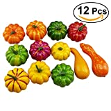 WINOMO Artificial Pumpkins and Gourds 12pcs Foamed plastics Assorted Table Centerpiece for Autumn Fall Halloween Thanksgiving Day Display
