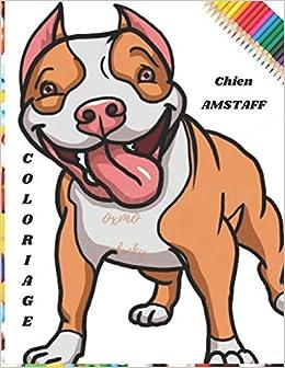 Amazon Fr Coloriage Chien Amstaff Livre De Coloriage Chien Amstaff 8 5x11pouces 80 Pages 40 Images Enfant A Partir De 6 Ans Ou Pour Adultes Editions Petit Oxmo Livres